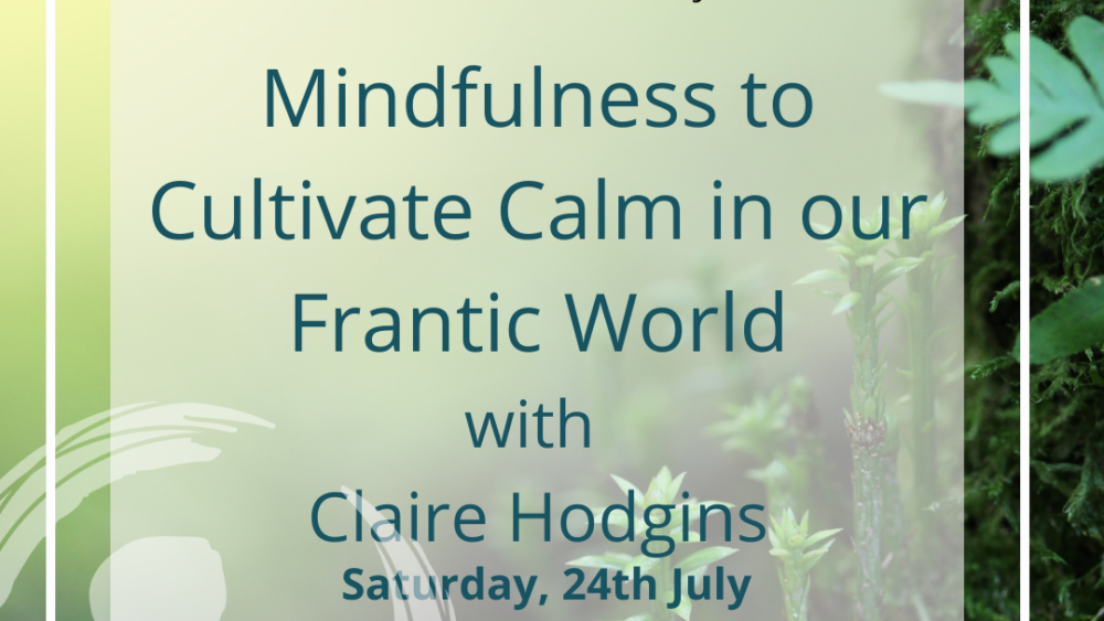 MIndfulness to Cultivate Calm in our Frantic World